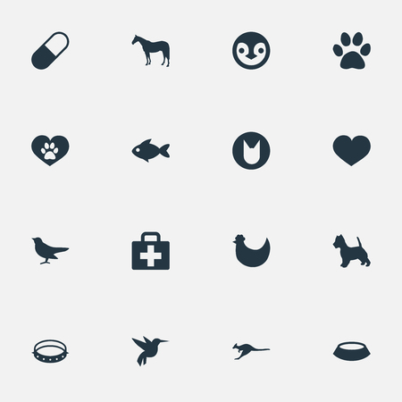 Vector Illustration Set Of Simple Zoo Icons. Elements Ornitology, Hummingbird, Belt And Other Synonyms Kit, Hummingbird And Cat. 向量圖像