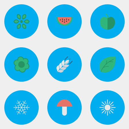 Vector Illustration Set Of Simple Gardening Icons. Elements Corn, Fungus, Melon And Other Synonyms Flower, Wheat And Fungus.