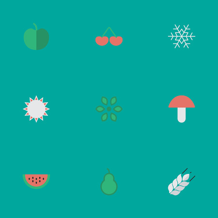 Vector Illustration Set Of Simple Gardening Icons. Elements Berry, Flake Of Snow, Fungus And Other Synonyms Fruit, Flake And Watermelon.