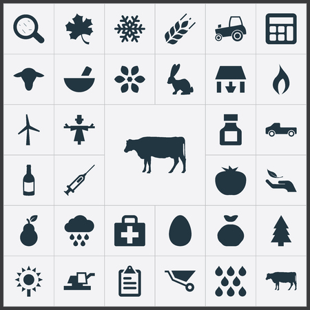 Vector Illustration Set Of Simple Harvest Icons. Elements Alcohol Beverage, Medicament, Turbine And Other Synonyms Storage, Scarecrow And Frond.