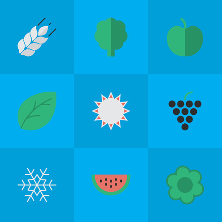 Vector Illustration Set Of Simple Horticulture Icons. Elements Corn, Sheet, Wood And Other Synonyms Tree, Wineglass And Wine. Illustration