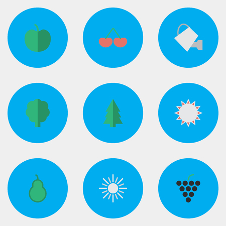 Vector Illustration Set Of Simple Horticulture Icons. Elements Punching Bag, Wine, Fruit And Other Synonyms Sunny, Hot And Bailer. Illustration