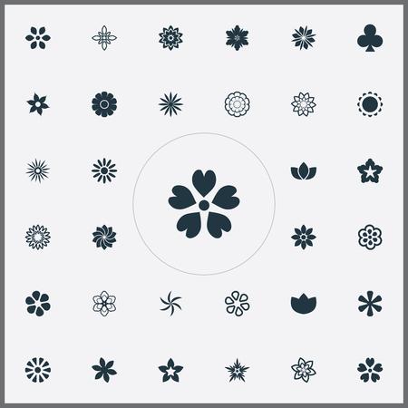シンプルなアイコンのベクター イラスト セット。要素のビクトリア、クロッカス、小花他類義語ラッキー、牡丹と蘭。