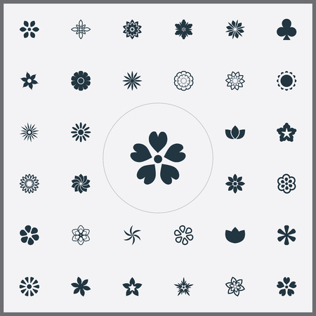Vector Illustration Set Of Simple  Icons. Elements Victoria, Crocus, Floret And Other Synonyms Lucky, Peony And Orchids. 向量圖像