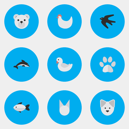 Vector Illustration Set Of Simple Wild Icons. Elements Panda , Cat , Fish Synonyms Foot, Rooster And Perch. Illustration