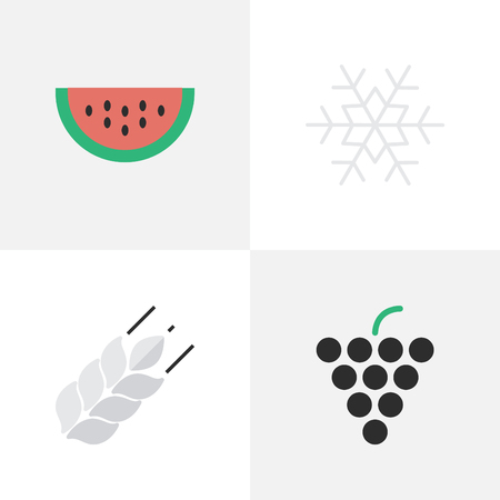 Vector Illustration Set Of Simple Horticulture Icons. Elements Flake Of Snow, Corn, Melon And Other Synonyms melon , grape,Corn And Flake.