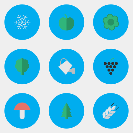 Vector Illustration Set Of Simple Gardening Icons. Elements Fungus, Tree, Wine And Other Synonyms Flower, Snowflake And Bailer.
