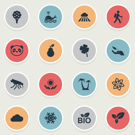 Vector Illustration Set Of Simple Geo Icons. Elements Nature Protection, Travel, Storm And Other Synonyms Snowflake, Whale And Meteorology.