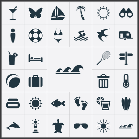 Vector Illustration Set Of Simple Seaside Icons. Elements Tortoise, Swallow, Mark And Other Synonyms Freedom, Swallow And Suitcase.