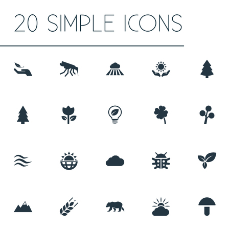 Vector Illustration Set Of Simple Bio Icons. Elements Cloud, Pinnacle, Sunshine And Other Synonyms Beetle, Plant And Heat.
