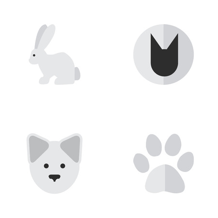 Vector Illustration Set Of Simple Wild Icons. Elements Hare, Foot, Tomcat And Other Synonyms Rabbit, Wolf And Paw. Ilustração