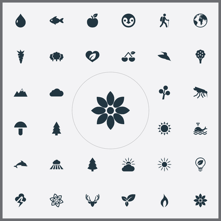 Vector Illustration Set Of Simple Nature Icons. Elements Sunlight, Bloom, Weather And Other Synonyms Seafood, Mammal And Apple. Ilustração