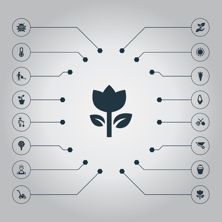 Vector Illustration Set Of Simple Horticulture Icons. Elements Flowerpot, Pail, Apple Timber And Other Synonyms Beetle, Insect And Celsius.