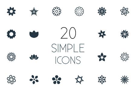 Vector illustratie Set van eenvoudige pictogrammen. Elements Stock, Blossoming, Ranunculus en andere synoniemen Marguerite, Laurel en orchideeën. Stock Illustratie