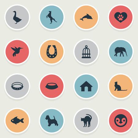 Elements Belt, Fish, Kater und andere Synonyme Kolibri, Kater und Fische. Vektor-Illustrations-Satz einfache Tier-Ikonen. Standard-Bild - 85316823