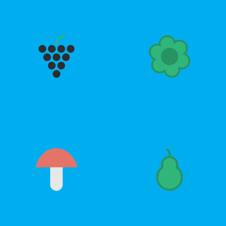 Vector Illustration Set Of Simple Gardening Icons. Elements Flower, Punching Bag, Wine And Other Synonyms Punching, Grape And Mushroom.