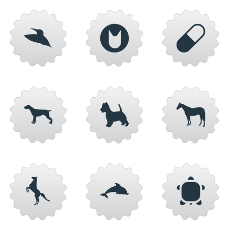 Vector Illustration Set Of Simple Wild Icons. Elements Shepherd, Medicine, Fish And Other Synonyms Dolphin, Animal And Tortoise.