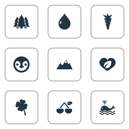 Vector Illustration Set Of Simple Nature Icons. Elements Oil, Orca, Jungle And Other Synonyms Woods, Fruits And Drop.