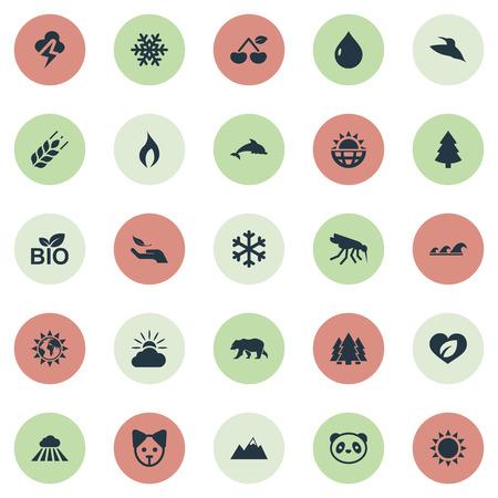 Ilustración vectorial Conjunto de iconos de ecología simple. Elementos encienden, mosquito, nube y otros sinónimos encienden, tormenta y animal. Foto de archivo - 85614485