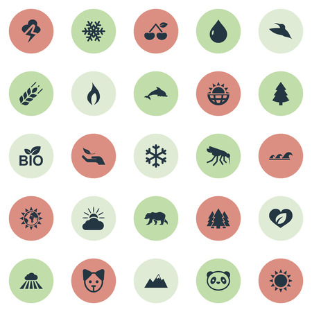 Vector Illustration Set Of Simple Ecology Icons. Elements Ignite, Gnat, Cloud And Other Synonyms Ignite, Storm And Animal.