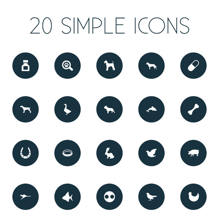 Vector Illustration Set Of Simple Animals Icons. Elements Pig, Bunny, Waterbird And Other Synonyms Canine, Bird And Pooch.