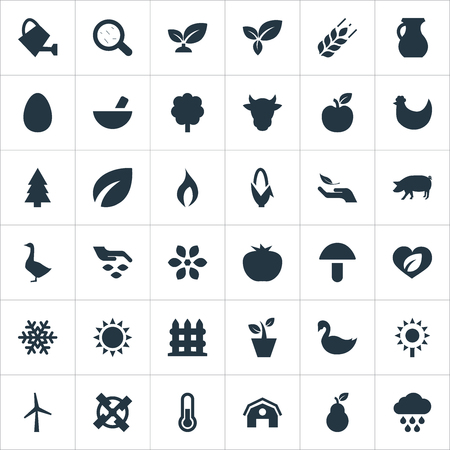Vector Illustration Set Of Simple Ecology Icons. Elements Seeds, Plant, Snowflake And Other Synonyms Barrier, Piggy And Swan. Illustration