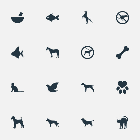 Vector Illustration Set Of Simple Animals Icons. Elements Pigeon, No Animal, Footprint And Other Synonyms Pounder, Dalmatian And Medicine.