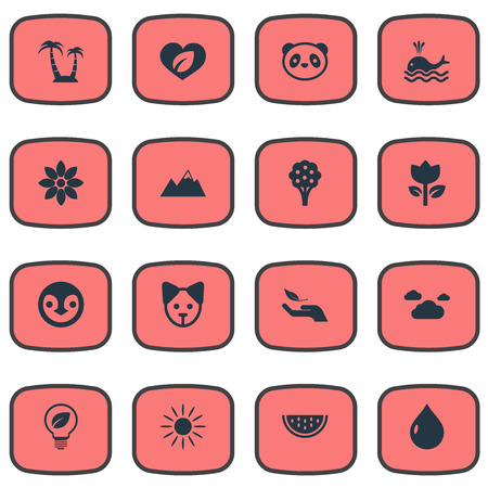 Vector Illustration Set Of Simple Natural Icons. Elements Clouds, Reef, Nature Protection And Other Synonyms Solar, Dog And Pinnacle. Illustration