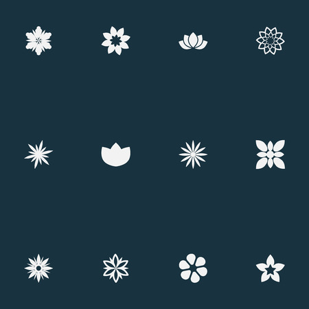 Vector Illustration Set Of Simple Flower Icons. Elements Morning Glory, Ornament, Camellia And Other Synonyms Jonquil, Peony And Delphinium. Illustration