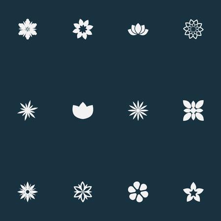 Vectorillustratiereeks Eenvoudige Bloempictogrammen. Elementen Morning Glory, Ornament, Camellia en andere synoniemen Jonquil, Peony en Delphinium.