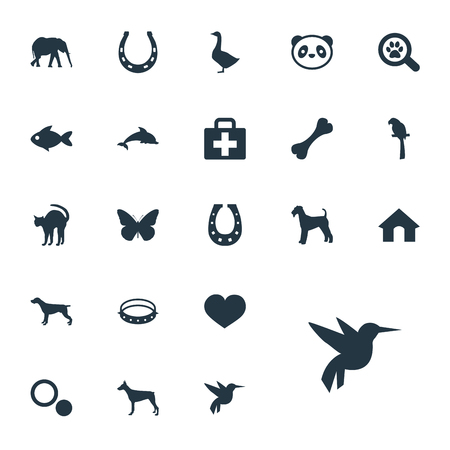 Vector Illustration Set Of Simple Zoo Icons. Elements Waterbird, Bear, Belt And Other Synonyms Box, Bear And Security. Illustration
