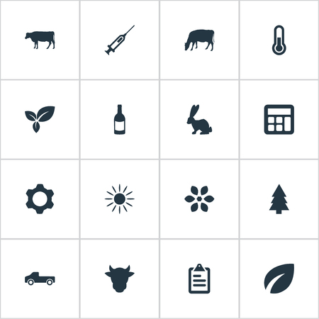 Vector Illustration Set Of Simple Harvest Icons. Elements Calculator, Livestock, Engine And Other Synonyms Medicine, Sunshine And Measurement. Illustration