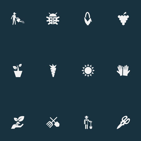 Vector Illustration Set Of Simple Garden Icons. Elements Root, Farmer, Fruit And Other Synonyms Plant, Flowerpot And Grower. Ilustração