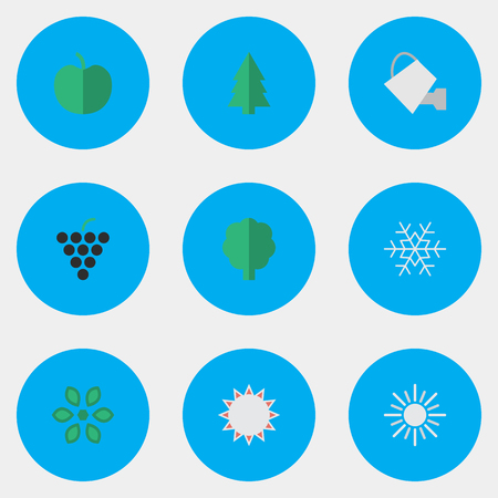 Vector Illustration Set Of Simple Garden Icons. Elements Flake Of Snow, Blossom, Wood And Other Synonyms Grape, Snowflake And Can.