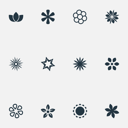 Vector Illustration Set Of Simple  Icons. Elements Floral, Daphne, Decoration And Other Synonyms Daisy, Victoria And Floret.