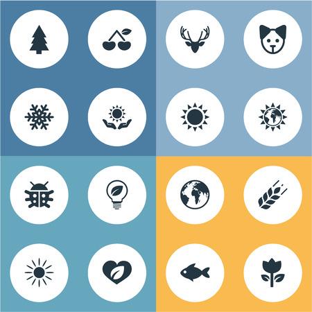 Vectorillustratiereeks Eenvoudige Ecologiepictogrammen. Elementen Dennenboom, tulpen, eland en andere synoniemen Winter, graan en tulpen.