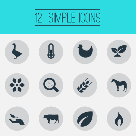 Vector Illustration Set Of Simple Energy Icons. Elements Zebra, Grain, Leaf And Other Synonyms Harvest, Bacteria And Germs.