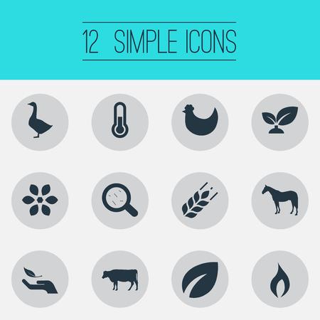 Vectorillustratiereeks Eenvoudige Energiepictogrammen. Elementen Zebra, graan, blad en andere synoniemen Oogst, bacteriën en ziektekiemen.
