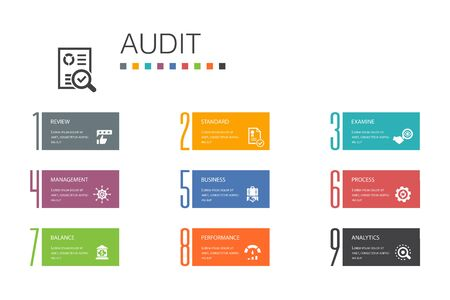 audit Infographic 10 option line concept.review, standard, examine, process simple icons