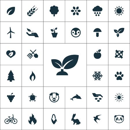 ecology icons universal set for web and UI