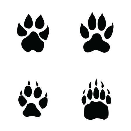 lion, tiger, wolf, bear footprint on white background
