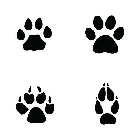 cat, jaguar, dog, fox footprint on white background