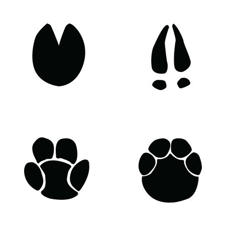 horse, hippopotamus, deer, elephant footprint on white background  イラスト・ベクター素材