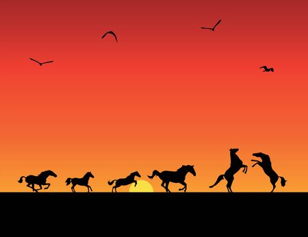 silhouettes of horses, sunset