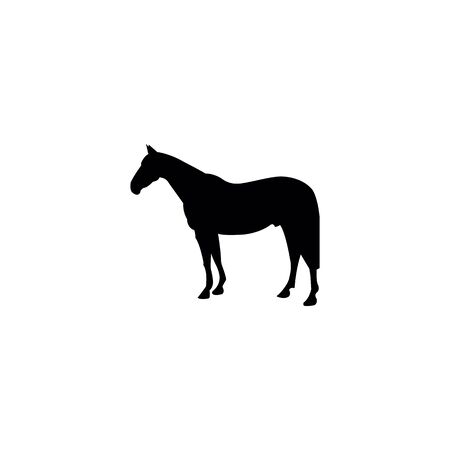 Horse silhouette on the white background. Stock Illustratie