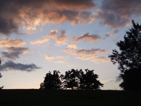 Sunset over trees, field, with pink clouds