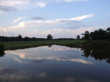 natural water reflection: reflection of clouds and trees over water Stock Photo