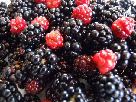 berries, close up of fresh berries