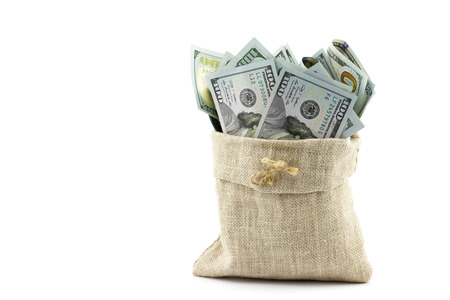 Money in the bag isolated on a white background