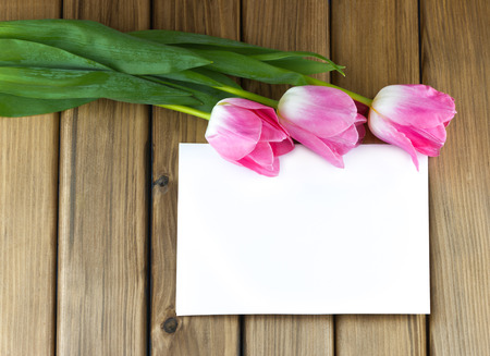 Top view of pink tulips with white sheet of paper on wooden background